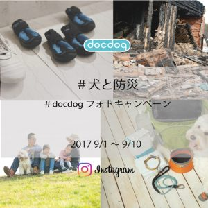 docdog Instagramフォトキャンペーン