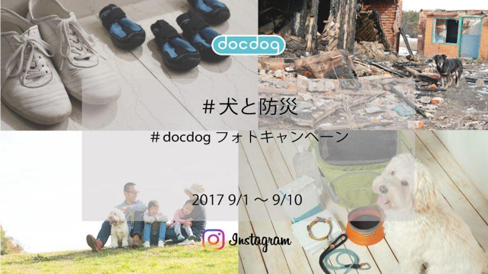 「犬と防災」をテーマにしたInstagramフォトキャンペーンをdocdogが開催。防災の日にちなんで