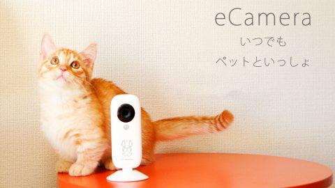 ホームセキュリティIoTカメラ「eCamera」