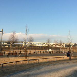 新横浜公園 ドッグラン