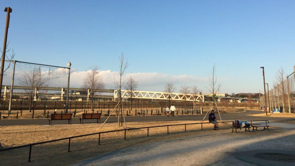 新横浜公園のドッグランは3,000平方メートルで天然芝!横浜最大規模で思い切り遊ばせられる!