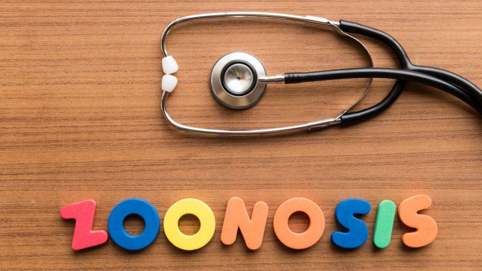 人獣共通感染症(ZOONOSIS、動物由来感染症)