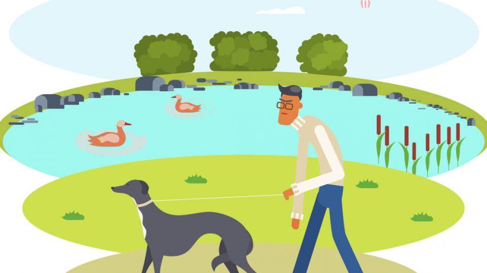 海の近くで愛犬と遊ぶ!たつみの森ドッグラン